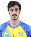 محمد فايز الحربى