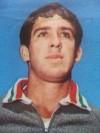 راميرو نافارو