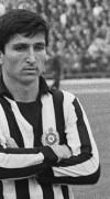 مصطفى حساناجيتش