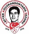 الدوري التركي لكرة القدم